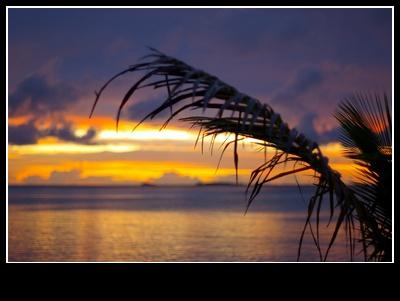그리운 몰디브